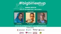 Virtual Big B Meet Up Animal Rescue